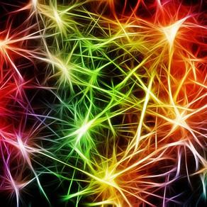 Atklāta jauna tipa smadzeņu šūna