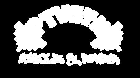Ptvgym oikea logo.png