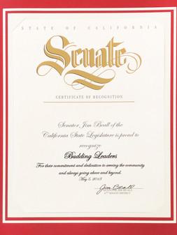 CA Senate Award.jpg