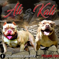 Ali_Kali-1b.jpg