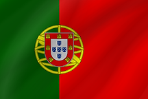 portugal-flag-wave-icon-256.png