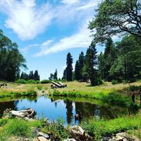 Lake Arrowhead Resort and
