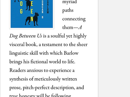 A lovely micro review of A DOG BETWEEN US