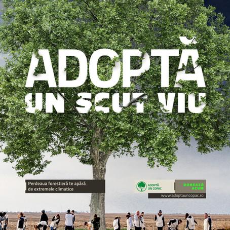 Viitor Plus: Adopta si tu un metru de perdea forestiera! Romania are nevoie de 20 000 de hectare.