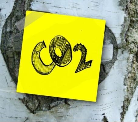 Cine plateste pentru decarbonizare?Impactul social al taxarii dioxidului de carbon in Romania.