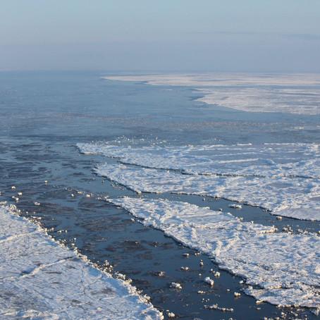 Schimbarile din Arctica nu raman in Arctica