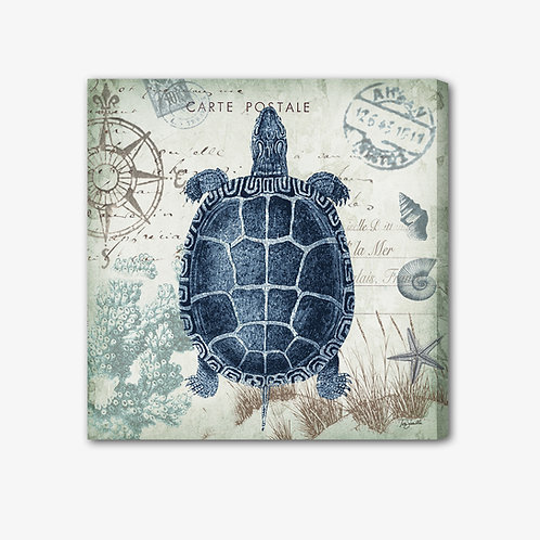 RBA049 - Quadro immagine marina tartaruga