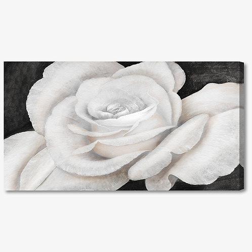 C002 - Quadro moderno floreale rosa bianca sbocciata