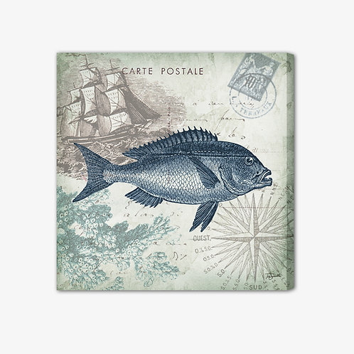 RBA051 - Quadro immagine marina pesce