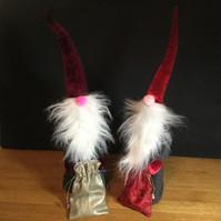articulate workshop gnomes.jpg