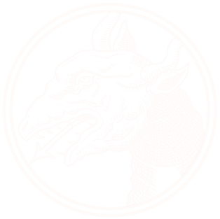 SnallyIcons.png