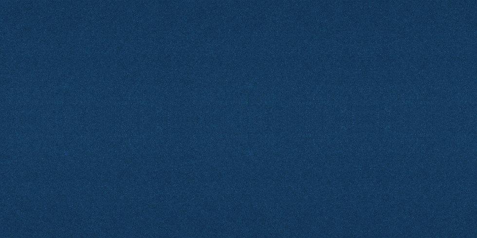 Snallygaster-Blue.jpg