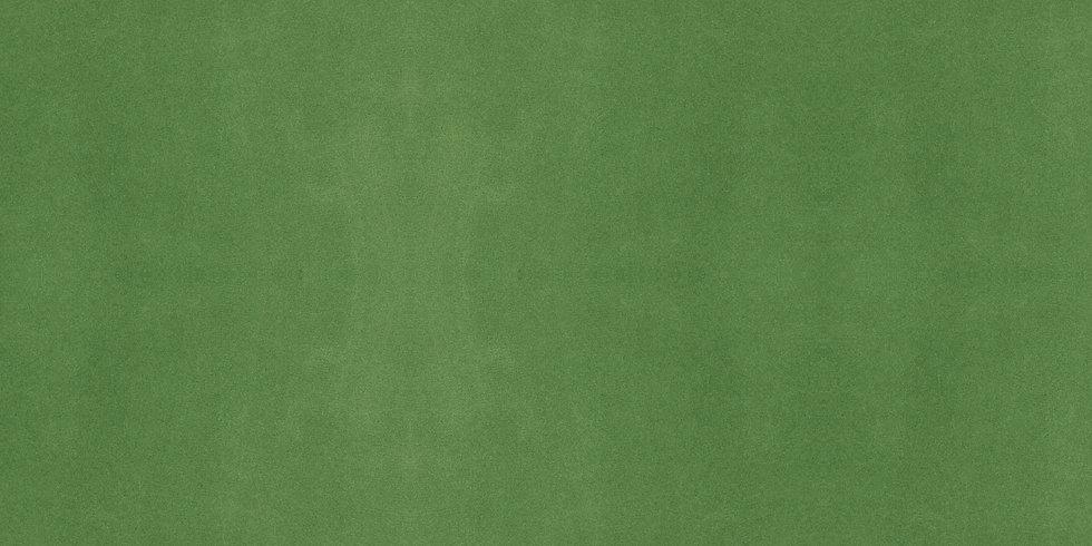 Snallygaster-Green.jpg