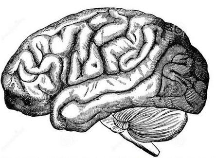Brain Injury Awareness & Mental Health Awareness week