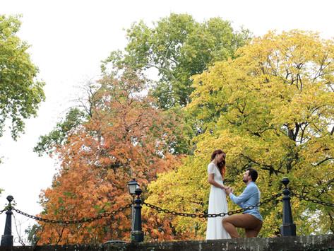 INSPIRATION / Promenade d'octobre en Forêt