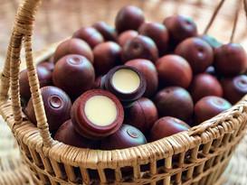 カカオバターと野生の蜜蝋リップバーム(催事で販売)