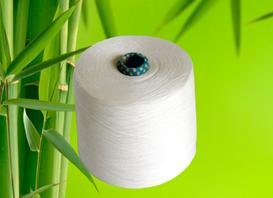 竹から作られた衣服の現実②