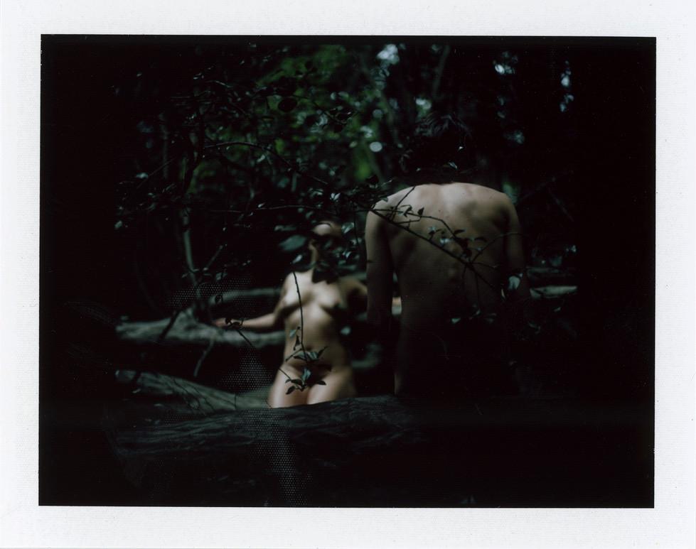 05-Lycanthropy by Selina Mayer.jpg
