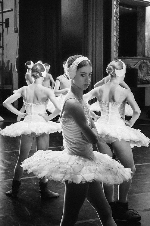 Swan on Rehearsal