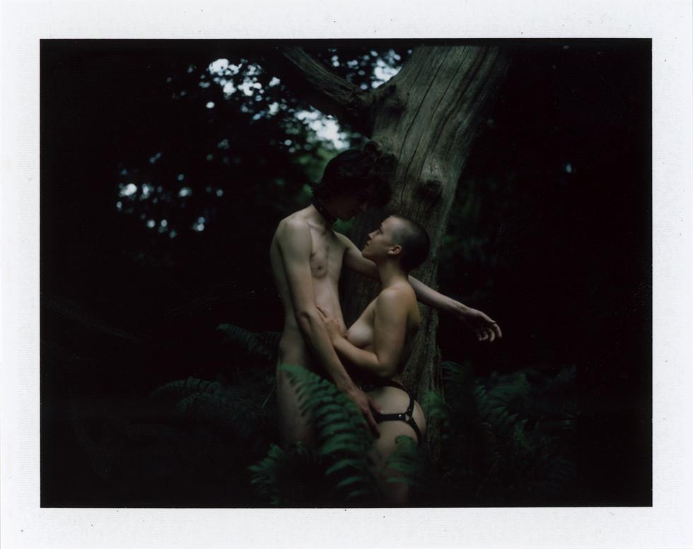07-Lycanthropy by Selina Mayer.jpg