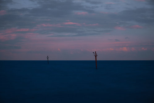 Birds Resting On The Sea