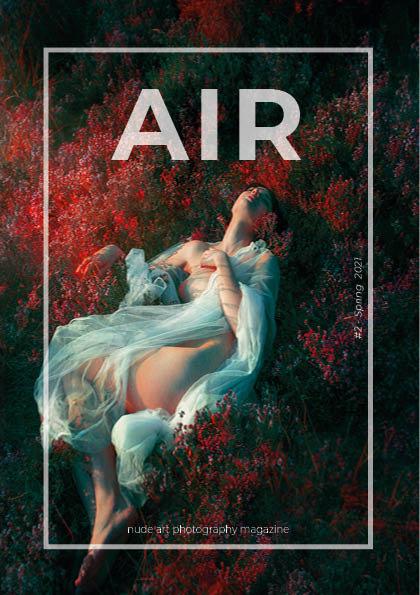 AIR Mag - Spring 2021