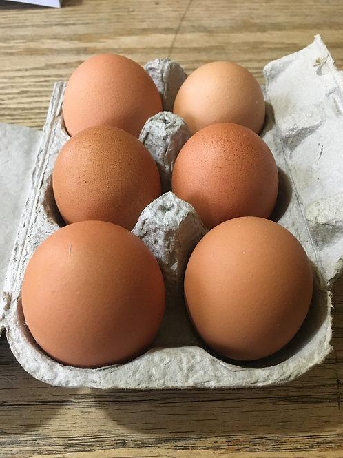 Harvest Season Half Egg Share