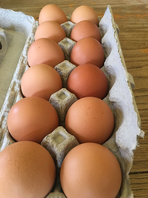 Harvest Season Egg Share