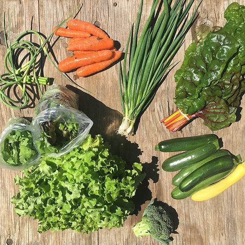Small Harvest Season Share