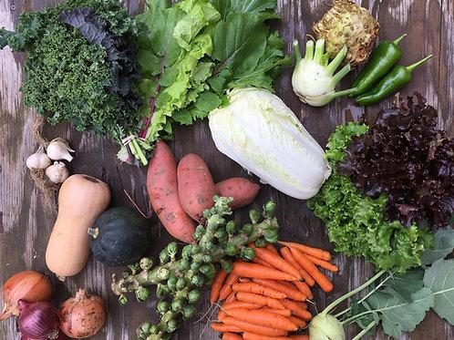 Large Harvest Season Share