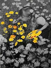 Vie en couleurs1.jpg