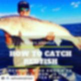 #Repost _saltwateradvisor with _get_repo