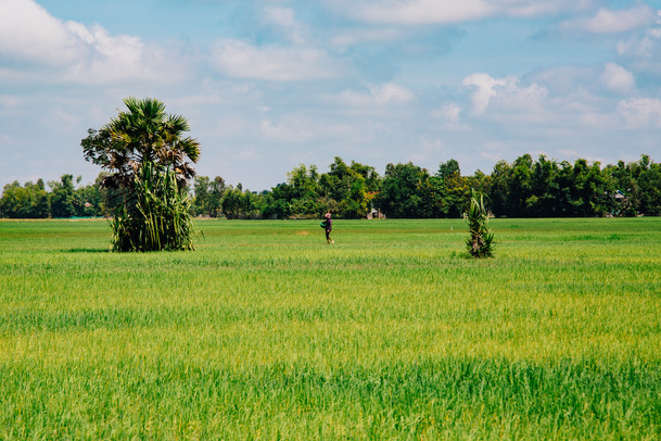 Cambodia-58.jpg