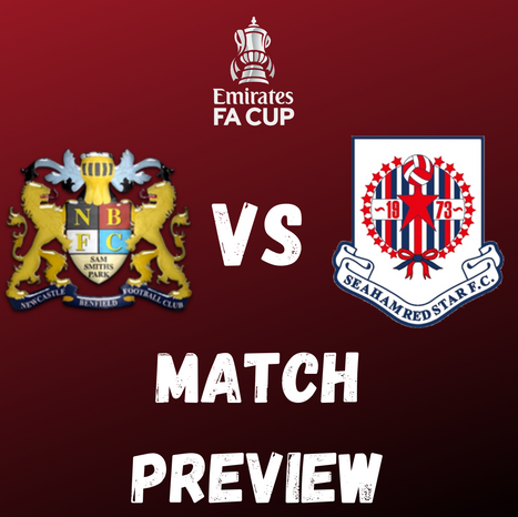 Lions vs Seaham Red Star: Match Preview