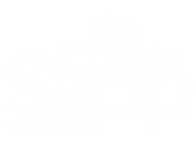 Kristine Sapp Kansas House District 17 Logo