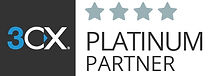 PLATINUM partner badge_low - Copy.jpg