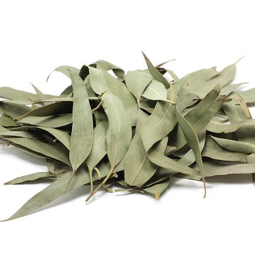 Dried Eucalyptus Leaves (1 Litre)