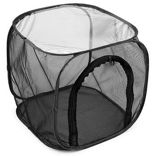 Net Cages