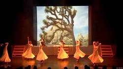 Médias photos diapo danse Geneve
