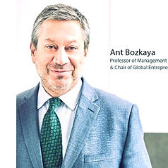 Ant Bozkaya