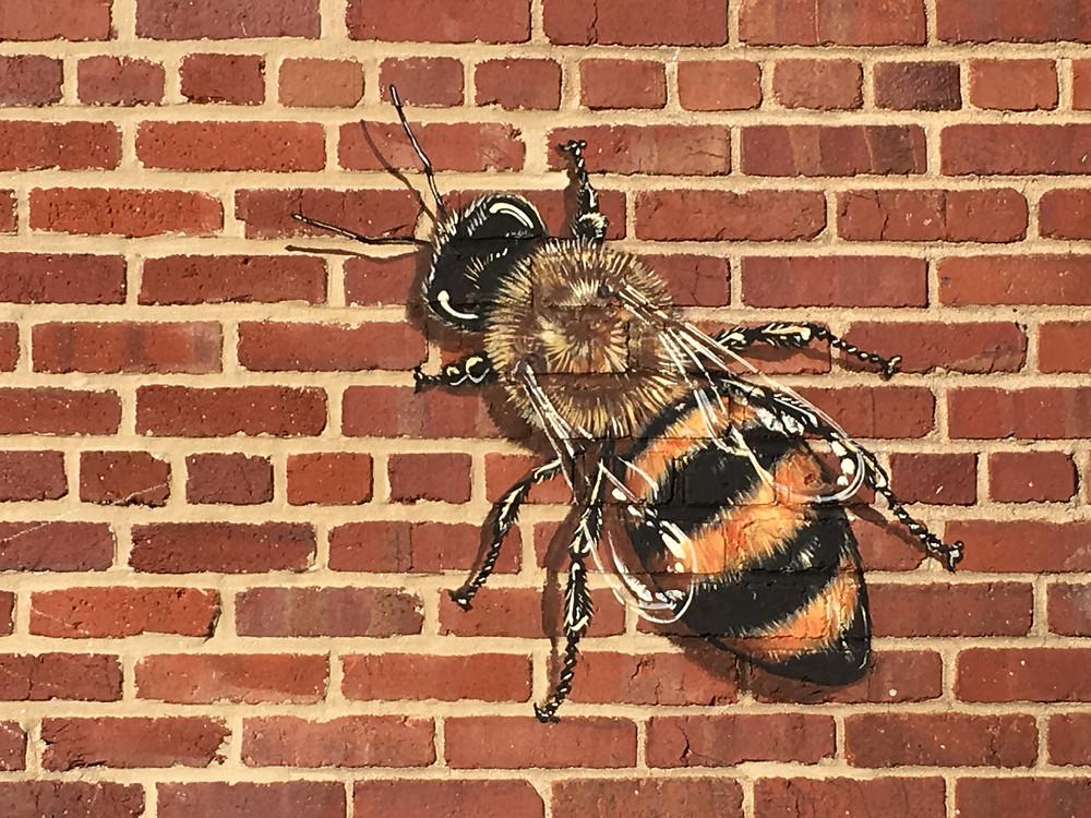 Detail of Honeybee at Janney Elementary School   DC