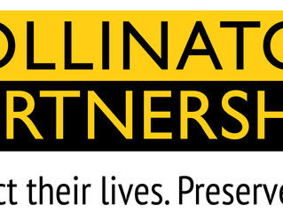 Meet Our Partners:  The Pollinator Partnership