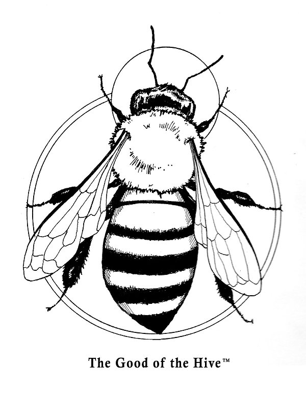 Free Bee Coloring Page | Imagine Plush | DC