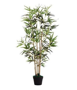 nep bamboe.jpg