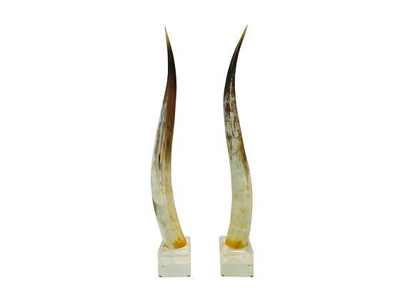 #1876 Pair Steer Horn on Lucite