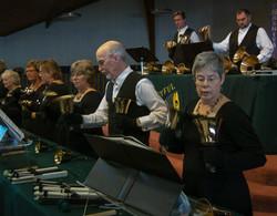 Ringing at a concert