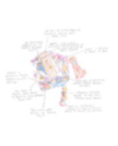 BarbieWhite-1849.jpg