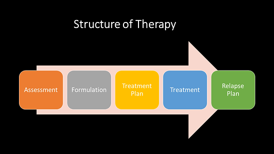 Structure of Therapy.png