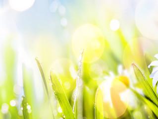 Let's prepare for spring together