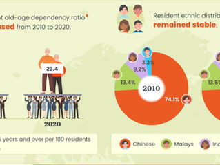Singapore in Numbers - Population by Age and Race